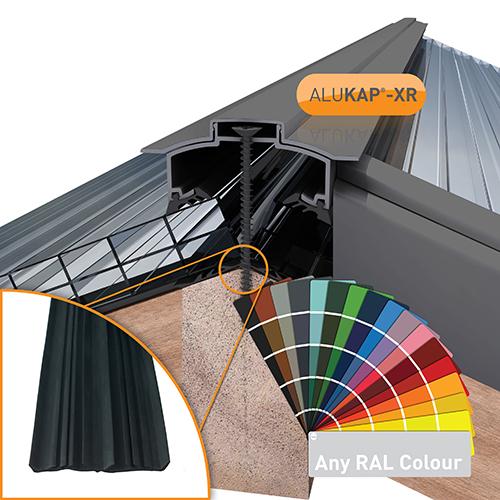 Alukap-XR Hip Bar 3.0m 45mm RG PC Alu E/Cap Image 2